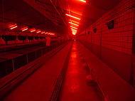 Eco-line3 LED en inductie verlichting